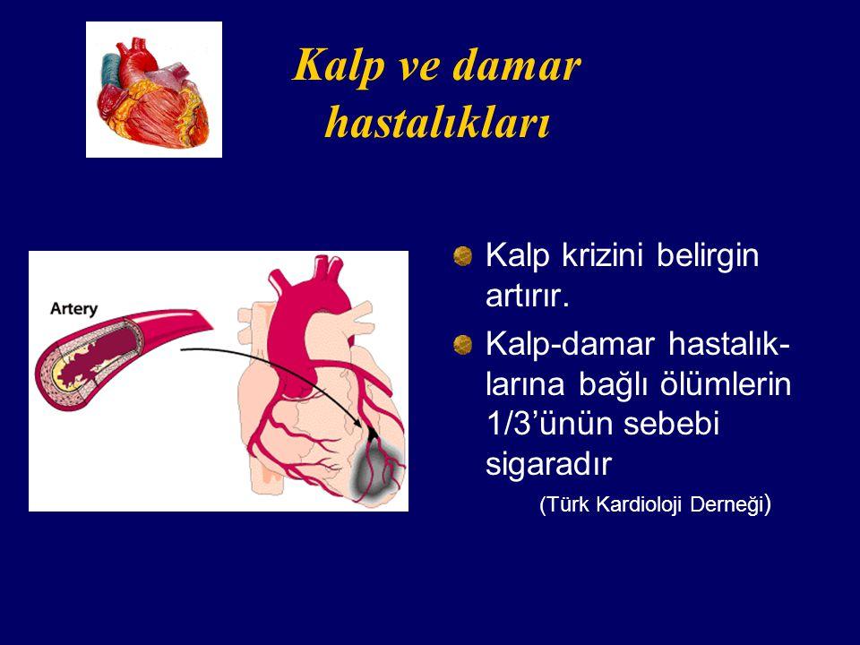 Kalp ve damar hastalıkları Kalp krizini belirgin artırır.