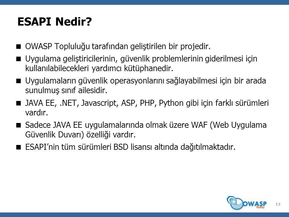 13 ESAPI Nedir?  OWASP Topluluğu tarafından geliştirilen bir projedir.  Uygulama geliştiricilerinin, güvenlik problemlerinin giderilmesi için kullan