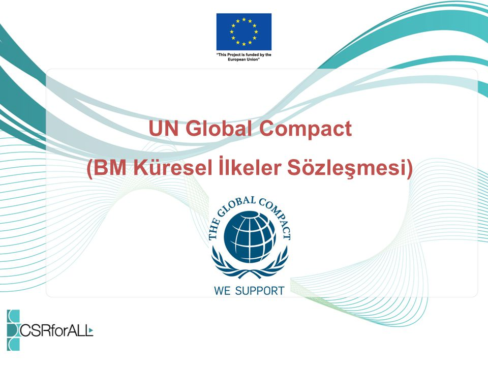 UN Global Compact (BM Küresel İlkeler Sözleşmesi)