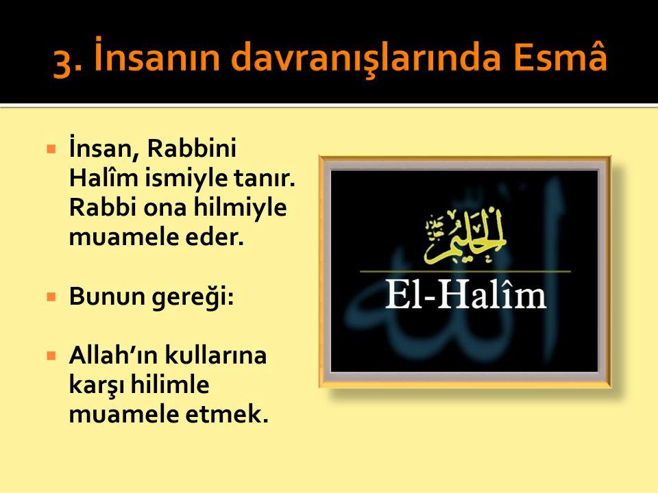  İnsan, Rabbini Halîm ismiyle tanır. Rabbi ona hilmiyle muamele eder.  Bunun gereği:  Allah'ın kullarına karşı hilimle muamele etmek.