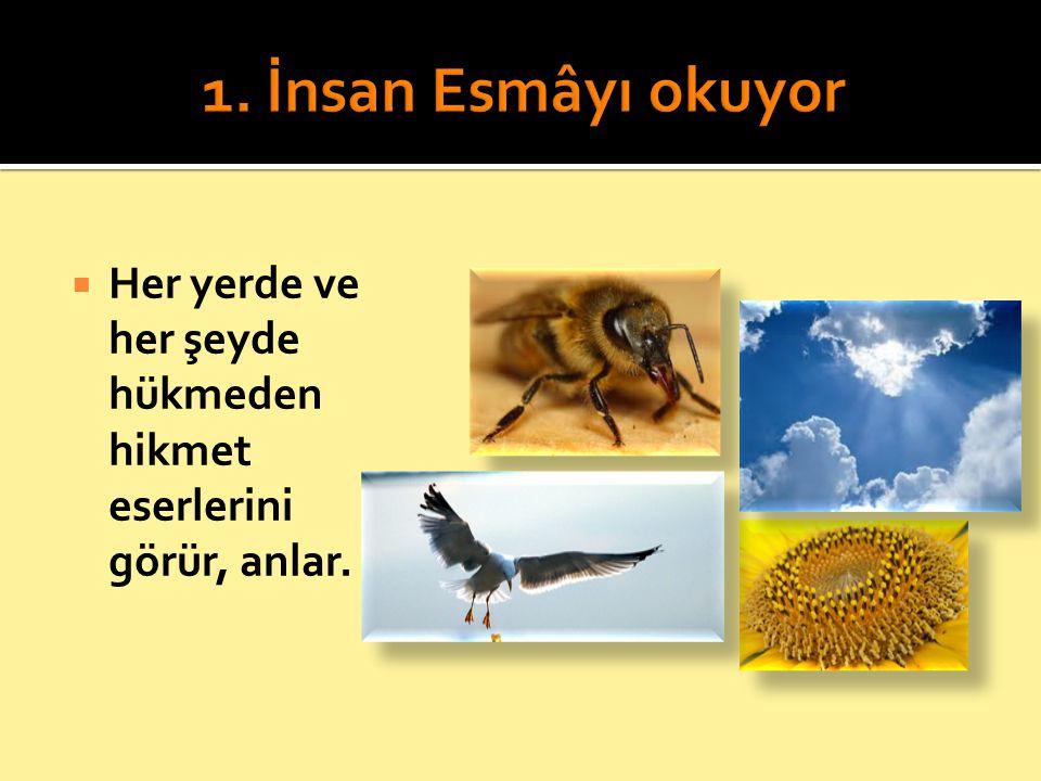  Her yerde ve her şeyde Allah'ın rahmet eserlerini görür, tanır.