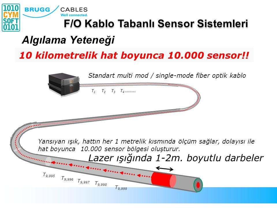 Standart multi mod / single-mode fiber optik kablo Lazer ışığında 1-2m. boyutlu darbeler Yansıyan ışık, hattın her 1 metrelik kısmında ölçüm sağlar, d