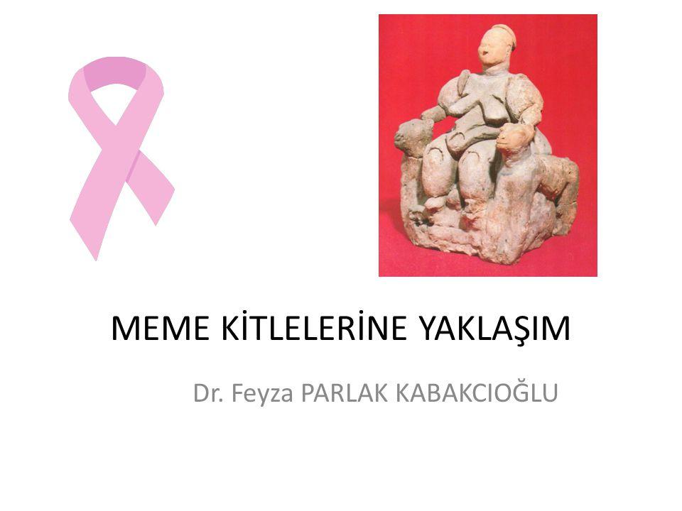Hedefler Meme hastalıklarında anamnez ve ayırıcı tanı Meme kanseri insidansı, risk faktörleri, erken tanısı Benign meme kitlelerinin özellikleri Klinik meme muayenesi Kendi kendine meme muayenesinin önemi