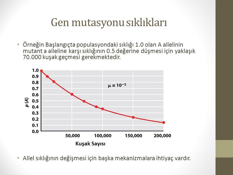 Gen mutasyonu sıklıkları Örneğin Başlangıçta populasyondaki sıklığı 1.0 olan A allelinin mutant a alleline karşı sıklığının 0.5 değerine düşmesi için