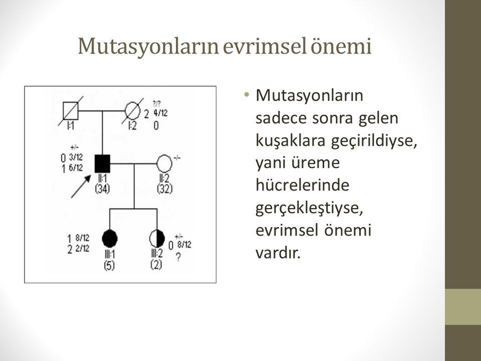 Mutasyonların evrimsel önemi Mutasyonların sadece sonra gelen kuşaklara geçirildiyse, yani üreme hücrelerinde gerçekleştiyse, evrimsel önemi vardır.
