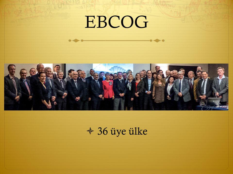 EBCOG  TEMS İ L  Kadın do ğ umcuların haklarını tüm politik ve tıbbi toplantılarda savunmak  Problemlere çözümler aramak