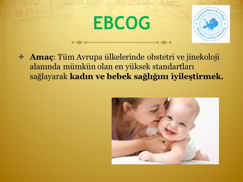 EBCOG  Asistan eğitimini tüm Avrupa ülkelerinde birbiriyle uyumlu olarak standardize etmek ve iyileştirmek
