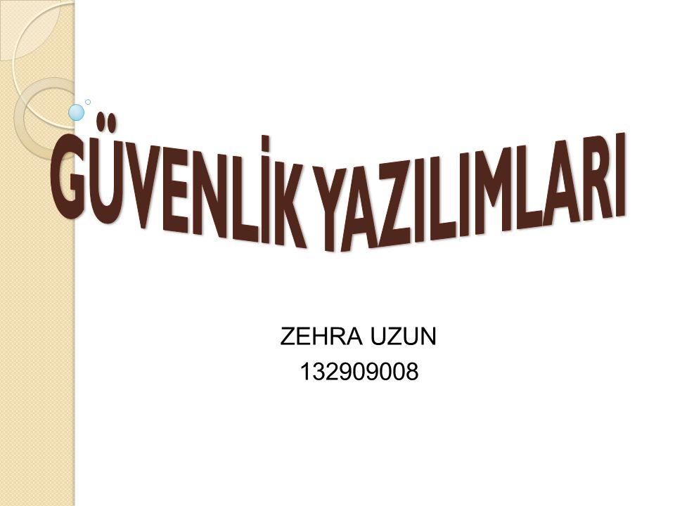 ZEHRA UZUN 132909008