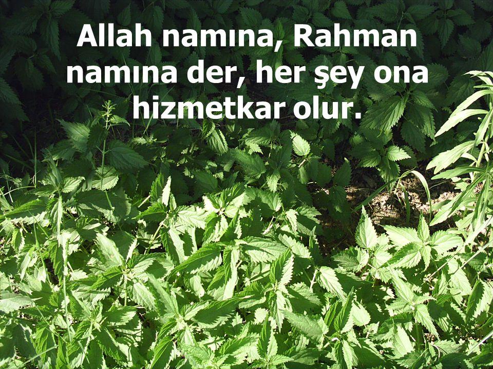 Allah namına, Rahman namına der, her şey ona hizmetkar olur.