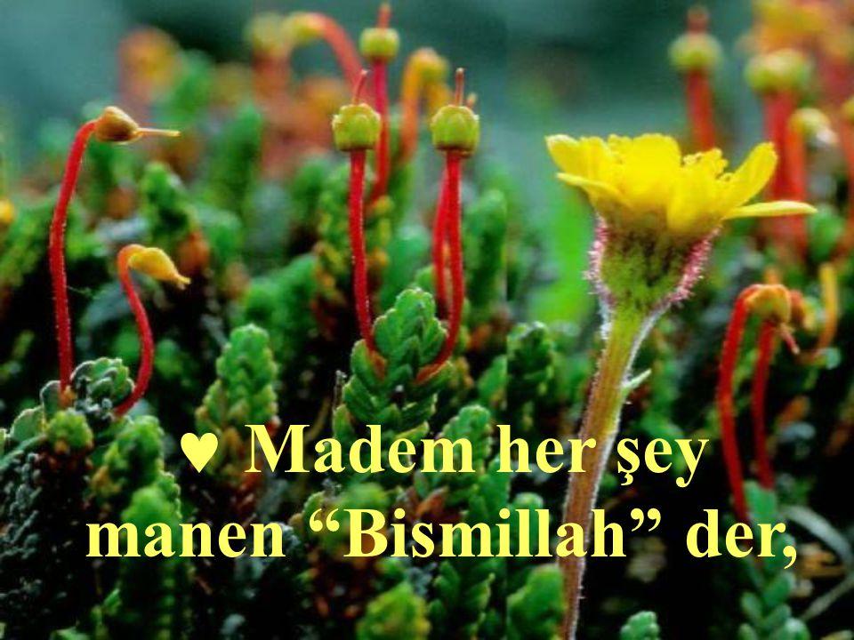 "Madem her şey manen ""Bismillah"" der,"