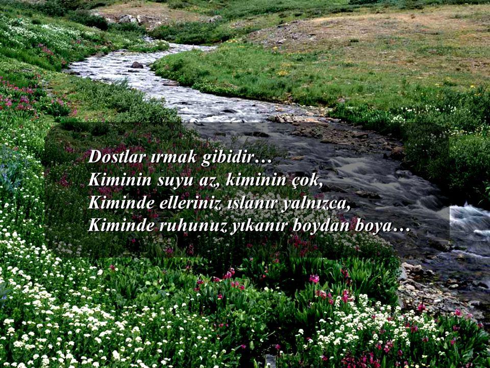 Dostlar ırmak gibidir… Kiminin suyu az, kiminin çok, Kiminde elleriniz ıslanır yalnızca, Kiminde ruhunuz yıkanır boydan boya…