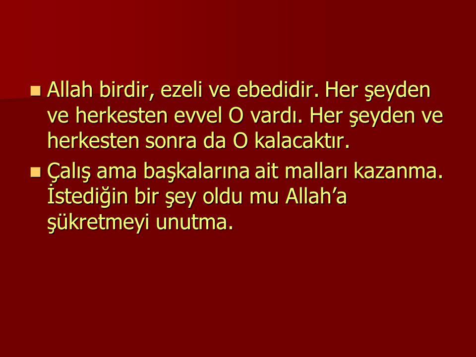 Allah birdir, ezeli ve ebedidir.Her şeyden ve herkesten evvel O vardı.