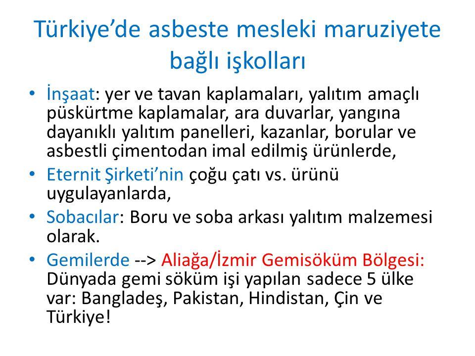 Türkiye'de asbeste mesleki maruziyete bağlı işkolları İnşaat: yer ve tavan kaplamaları, yalıtım amaçlı püskürtme kaplamalar, ara duvarlar, yangına dayanıklı yalıtım panelleri, kazanlar, borular ve asbestli çimentodan imal edilmiş ürünlerde, Eternit Şirketi'nin çoğu çatı vs.