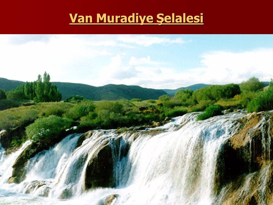 Van Muradiye Şelalesi