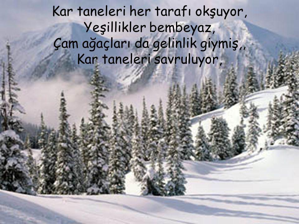 Kar taneleri her tarafı okşuyor, Yeşillikler bembeyaz, Çam ağaçları da gelinlik giymiş,, Kar taneleri savruluyor,