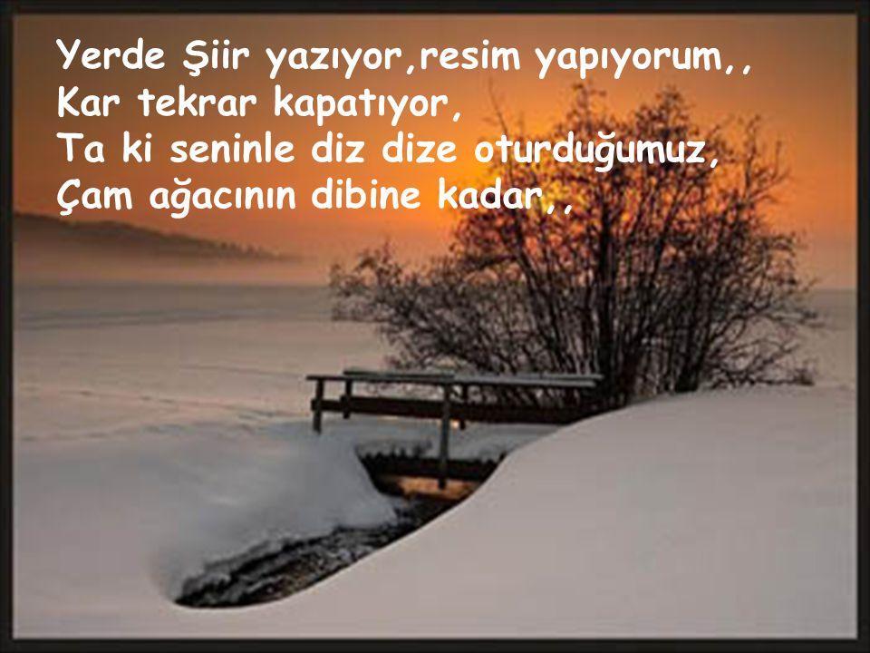 Yerde Şiir yazıyor,resim yapıyorum,, Kar tekrar kapatıyor, Ta ki seninle diz dize oturduğumuz, Çam ağacının dibine kadar,,