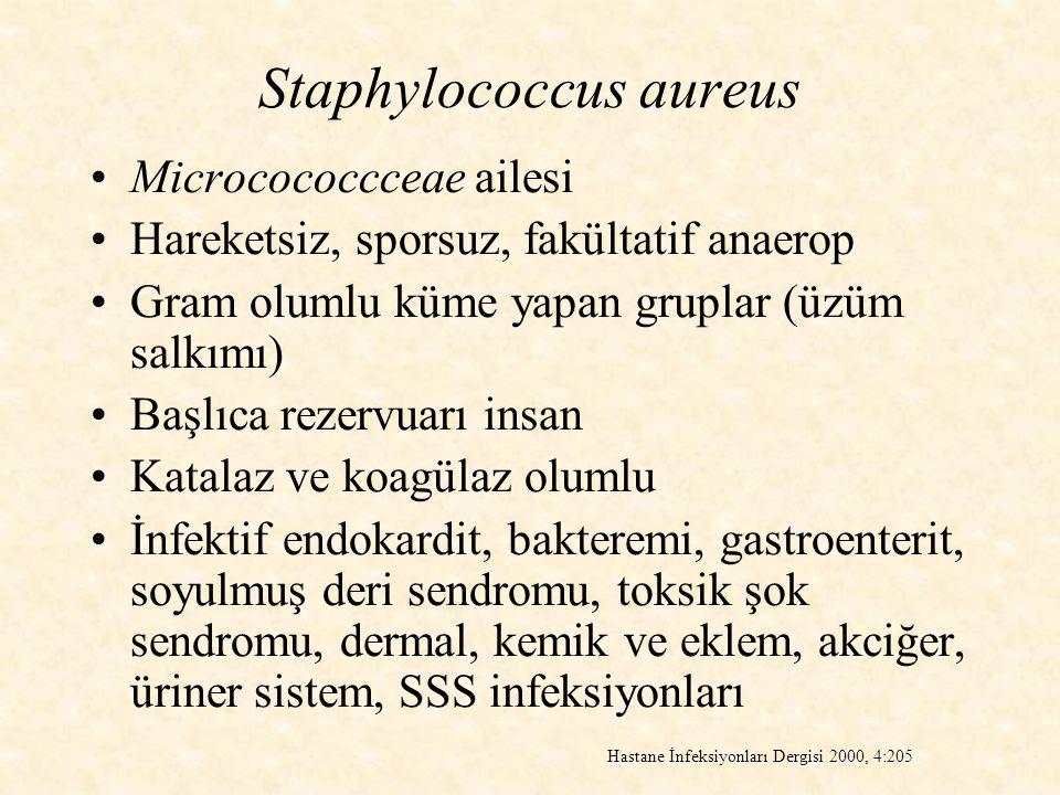 Staphylococcus aureus Microcococcceae ailesi Hareketsiz, sporsuz, fakültatif anaerop Gram olumlu küme yapan gruplar (üzüm salkımı) Başlıca rezervuarı insan Katalaz ve koagülaz olumlu İnfektif endokardit, bakteremi, gastroenterit, soyulmuş deri sendromu, toksik şok sendromu, dermal, kemik ve eklem, akciğer, üriner sistem, SSS infeksiyonları Hastane İnfeksiyonları Dergisi 2000, 4:205
