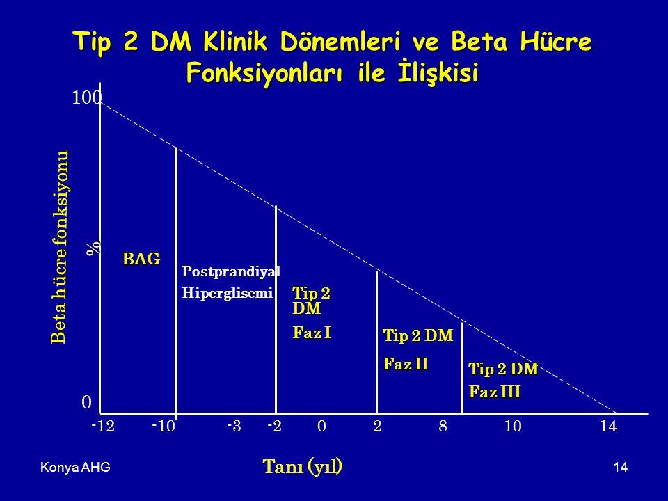 Konya AHG14 100 0 Beta hücre fonksiyonu % -12-10-3-20281014 Tanı (yıl) BAG Postprandiyal Hiperglisemi Tip 2 DM Faz I Tip 2 DM Faz II Tip 2 DM Faz III Tip 2 DM Klinik Dönemleri ve Beta Hücre Fonksiyonları ile İlişkisi