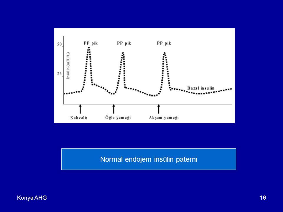 Konya AHG16 Normal endojem insülin paterni