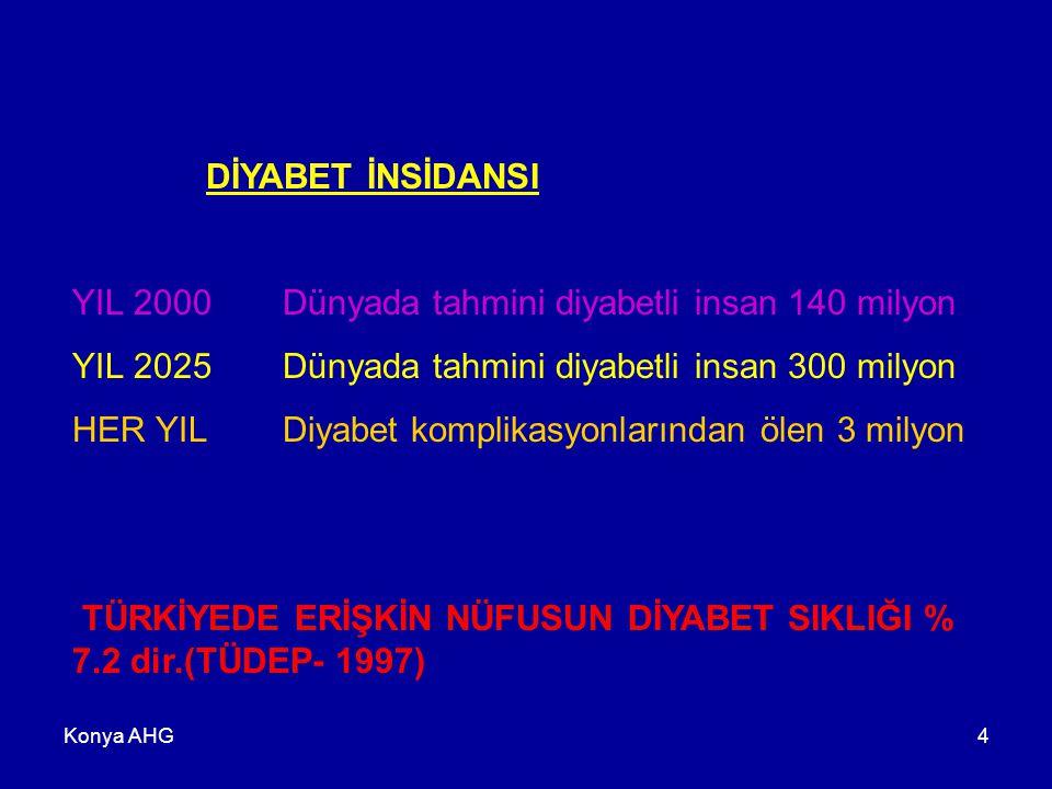 Konya AHG15 Tip 2 DM Klinik Dönemleri  Tip 2 DM  Faz I: AKŞ-TKŞ yüksekliği Daha sonra insülin direncinin artışı ve beta hücre fonksiyonundaki azalma.