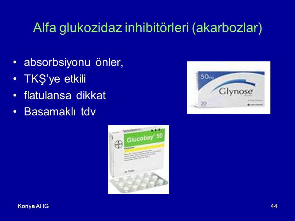 Konya AHG44 Alfa glukozidaz inhibitörleri (akarbozlar) absorbsiyonu önler, TKŞ'ye etkili flatulansa dikkat Basamaklı tdv