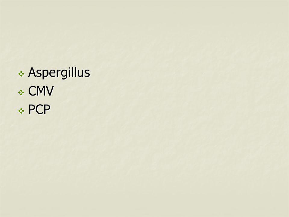  Aspergillus  CMV  PCP