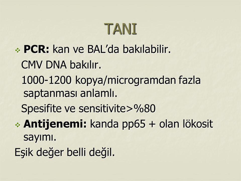 TANI  PCR: kan ve BAL'da bakılabilir. CMV DNA bakılır. CMV DNA bakılır. 1000-1200 kopya/microgramdan fazla saptanması anlamlı. 1000-1200 kopya/microg