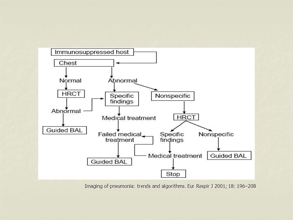 Imaging of pneumonia: trends and algorithms. Eur Respir J 2001; 18: 196–208