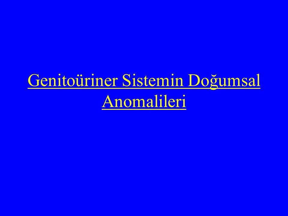 Renal anomaliler sayı Pozisyon füzyon Potter sendromu:bilateral renal agenezi nadir ve tedavisi mümkün olmayan bir durumdur Tek taraflı renal agenezi 1000 kişide 1 sıklıkta görülebilir