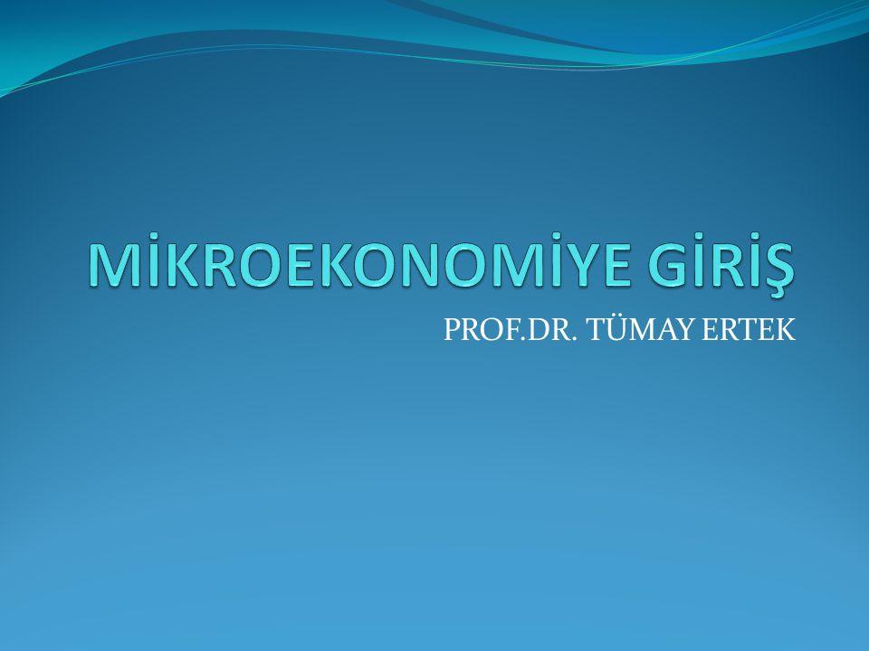 PROF.DR. TÜMAY ERTEK