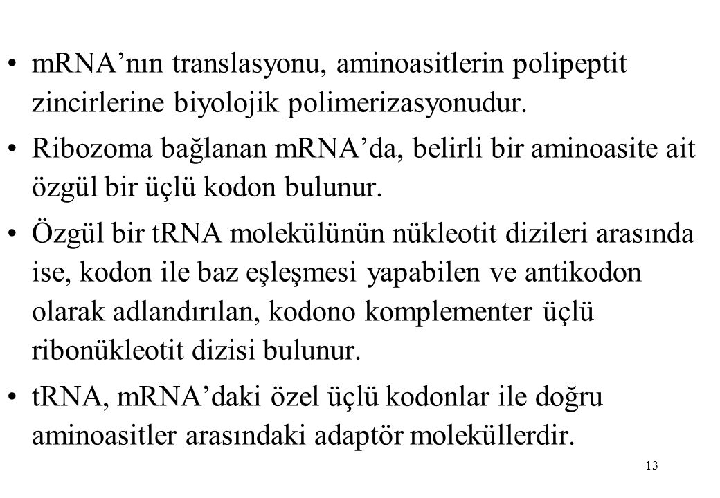 13 mRNA'nın translasyonu, aminoasitlerin polipeptit zincirlerine biyolojik polimerizasyonudur. Ribozoma bağlanan mRNA'da, belirli bir aminoasite ait ö