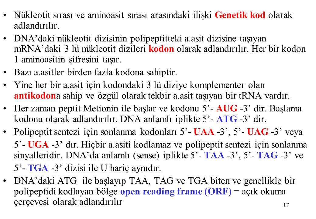 17 Nükleotit sırası ve aminoasit sırası arasındaki ilişki Genetik kod olarak adlandırılır. DNA'daki nükleotit dizisinin polipeptitteki a.asit dizisine
