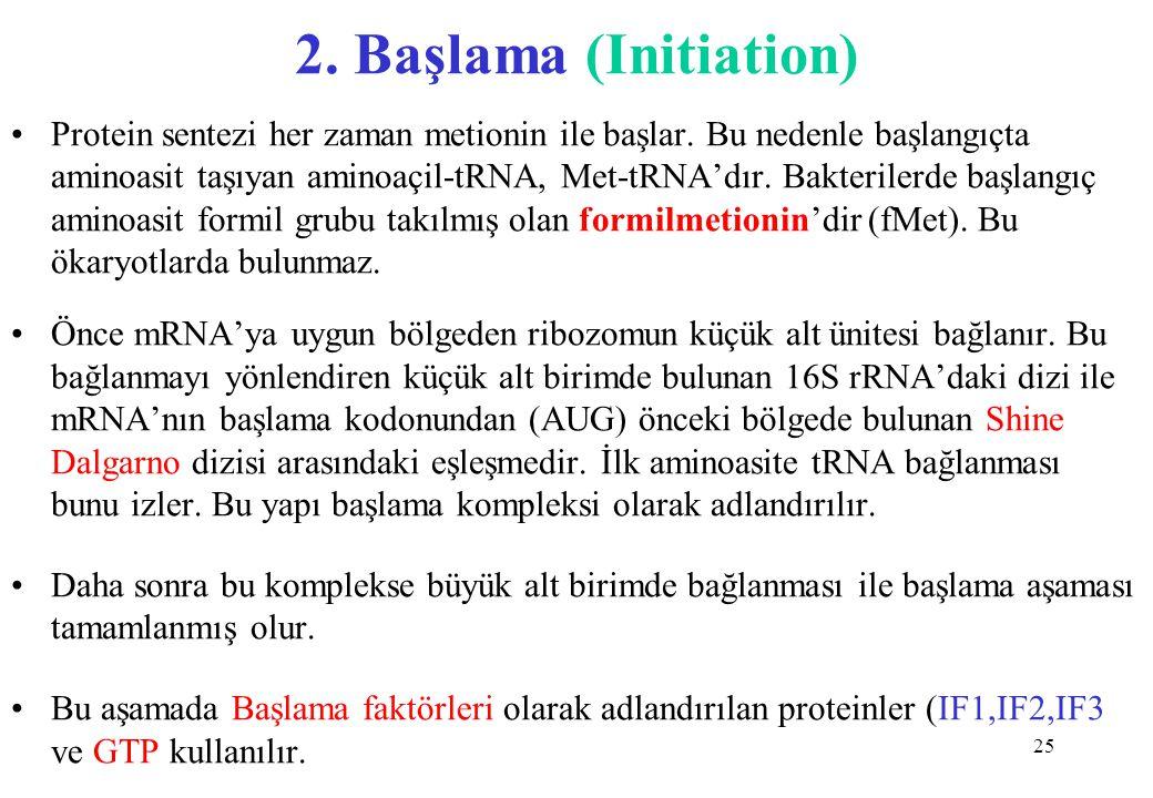 25 2. Başlama (Initiation) Protein sentezi her zaman metionin ile başlar. Bu nedenle başlangıçta aminoasit taşıyan aminoaçil-tRNA, Met-tRNA'dır. Bakte