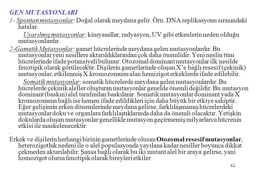 42 GEN MUTASYONLARI 1- Spontan mutasyonlar: Doğal olarak meydana gelir. Örn. DNA replikasyonu sırasındaki hatalar. Uyarılmış mutasyonlar: kimyasallar,