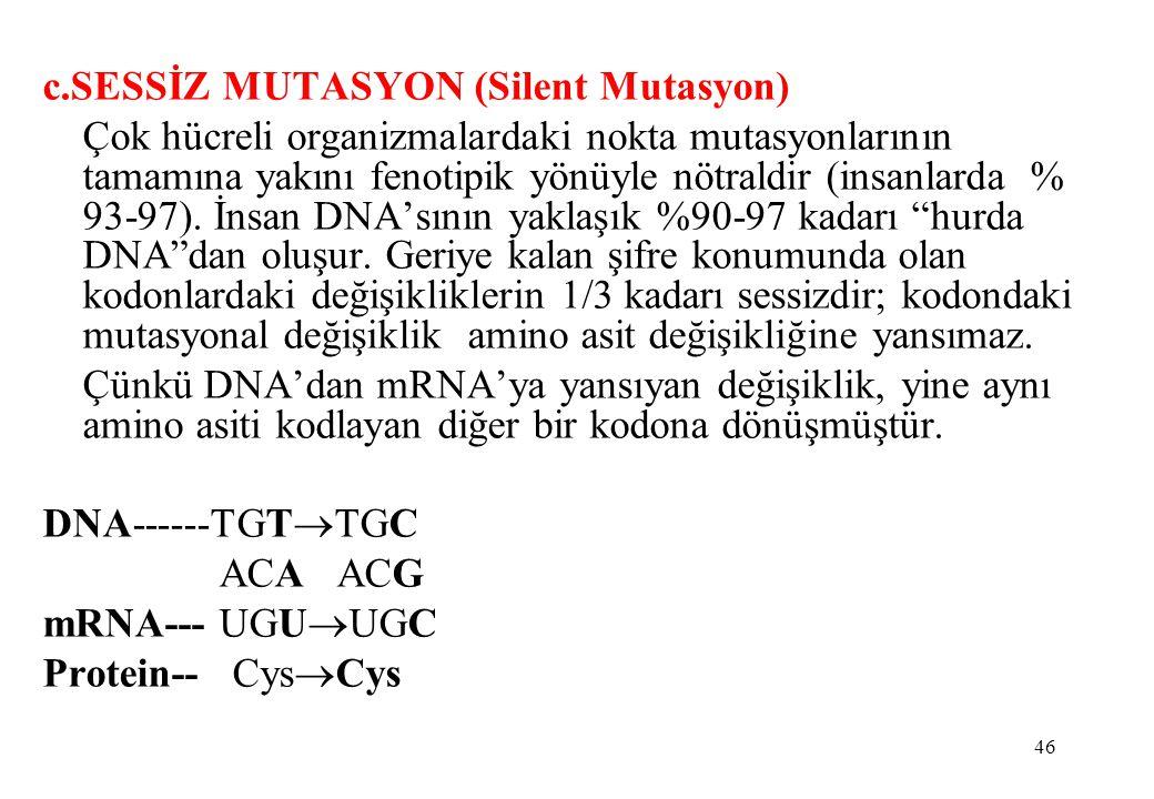 46 c.SESSİZ MUTASYON (Silent Mutasyon) Çok hücreli organizmalardaki nokta mutasyonlarının tamamına yakını fenotipik yönüyle nötraldir (insanlarda % 93