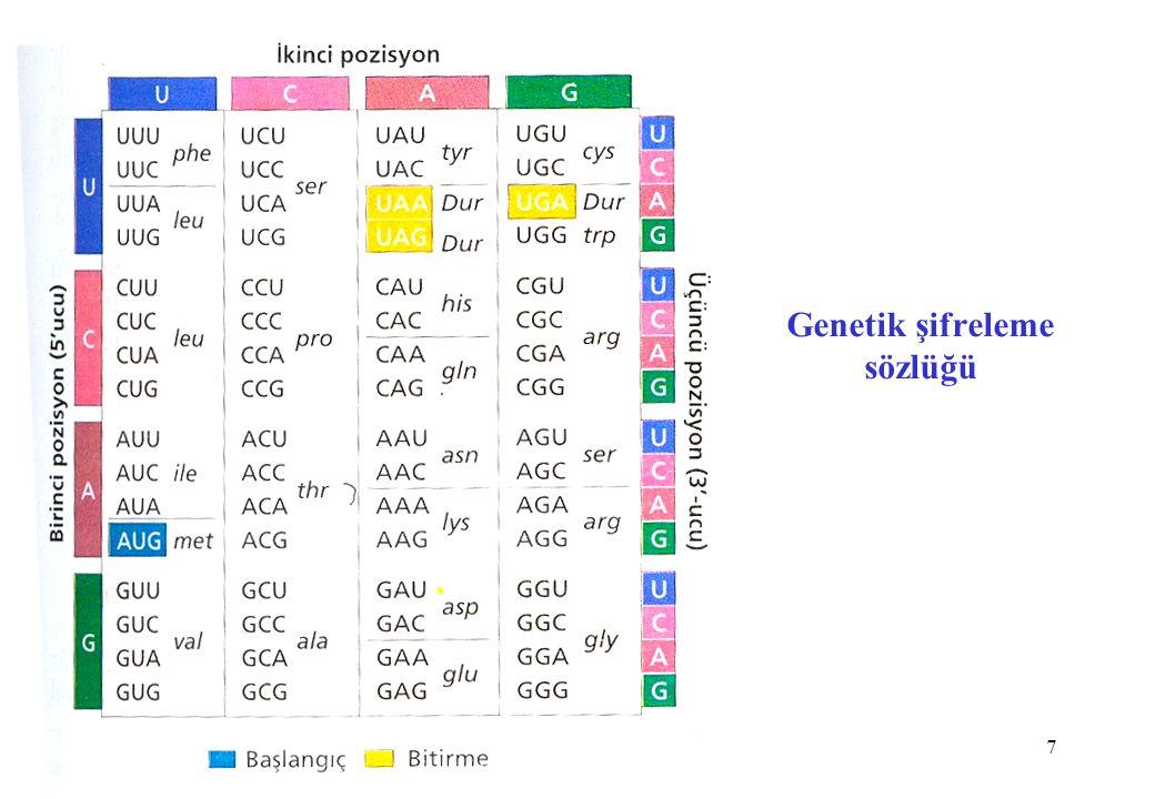 8 Dejenere Şifre ve Wobble Hipotezi Aminoasitlerin hemen hepsi 2,3 yada 4 farklı kodon tarafından belirlenir.