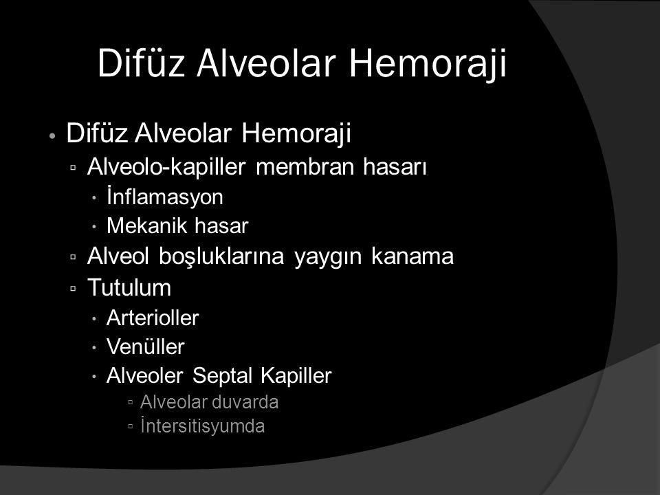 Difüz Alveolar Hemoraji ▫ Alveolo-kapiller membran hasarı  İnflamasyon  Mekanik hasar ▫ Alveol boşluklarına yaygın kanama ▫ Tutulum  Arterioller  Venüller  Alveoler Septal Kapiller ▫ Alveolar duvarda ▫ İntersitisyumda