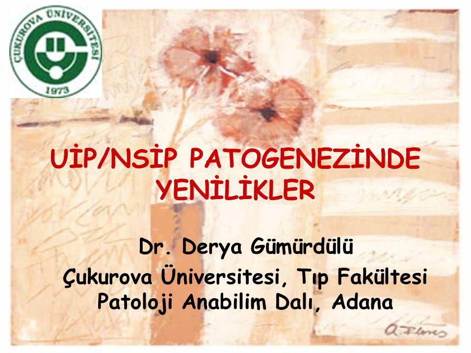 UİP/NSİP PATOGENEZİNDE YENİLİKLER Dr. Derya Gümürdülü Çukurova Üniversitesi, Tıp Fakültesi Patoloji Anabilim Dalı, Adana