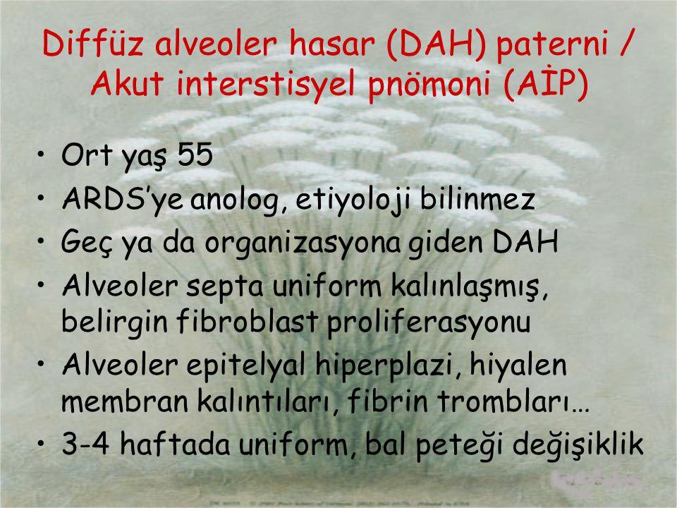 Diffüz alveoler hasar (DAH) paterni / Akut interstisyel pnömoni (AİP) Ort yaş 55 ARDS'ye anolog, etiyoloji bilinmez Geç ya da organizasyona giden DAH