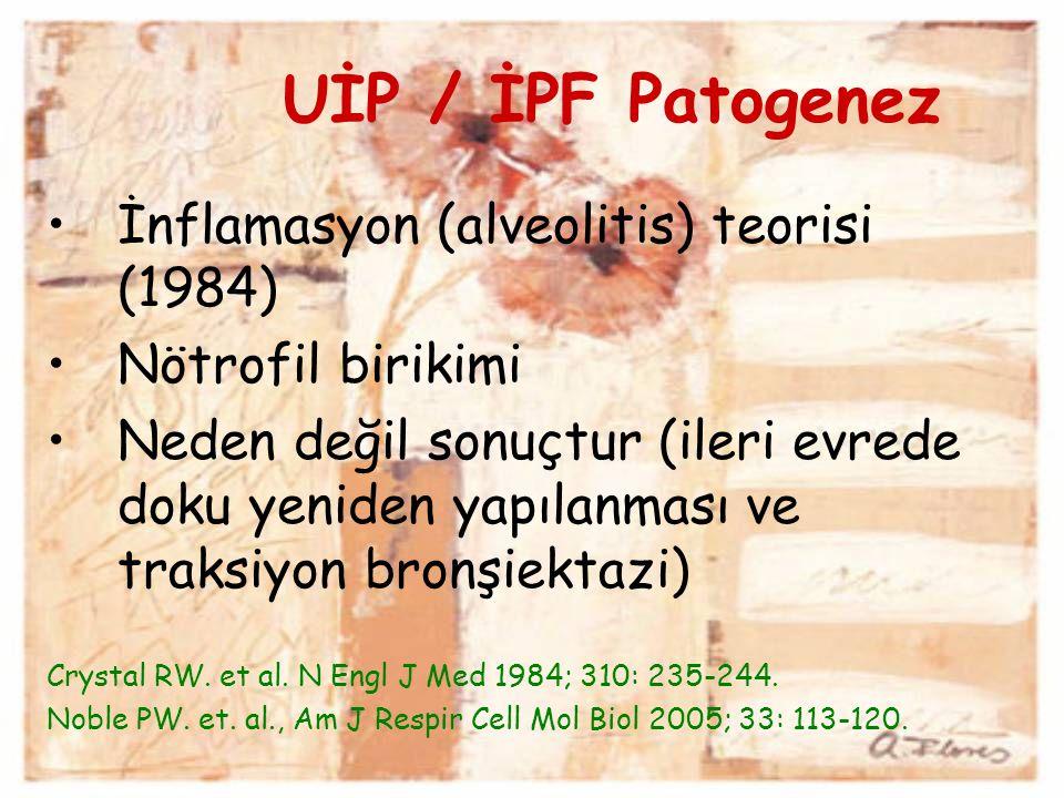 UİP / İPF Patogenez İnflamasyon (alveolitis) teorisi (1984) Nötrofil birikimi Neden değil sonuçtur (ileri evrede doku yeniden yapılanması ve traksiyon
