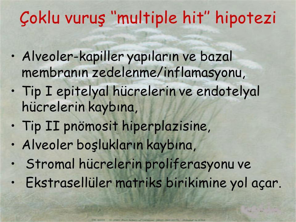 Çoklu vuruş ''multiple hit'' hipotezi Alveoler-kapiller yapıların ve bazal membranın zedelenme/inflamasyonu, Tip I epitelyal hücrelerin ve endotelyal