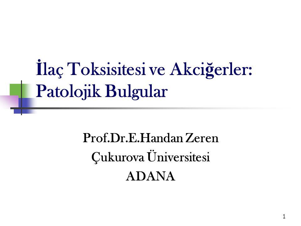 1 Prof.Dr.E.Handan Zeren Çukurova Üniversitesi ADANA İ laç Toksisitesi ve Akci ğ erler: Patolojik Bulgular