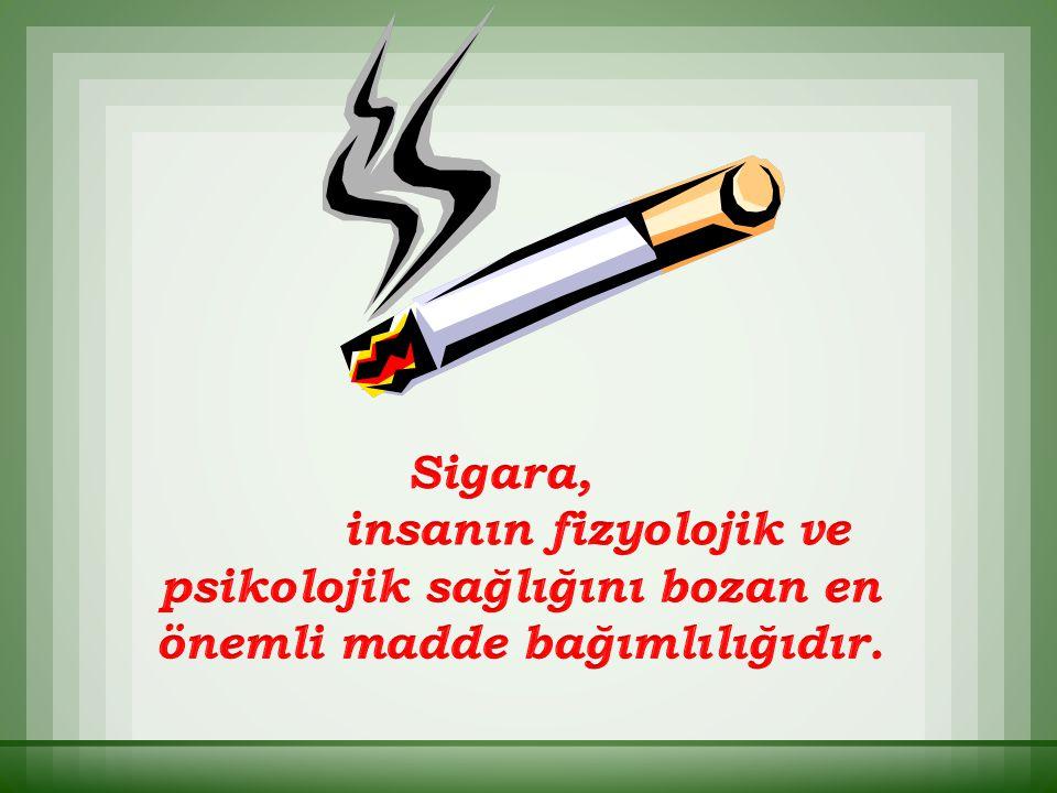Sigaraya karşı savaş kanserlein % 30 unu yok edecektir.