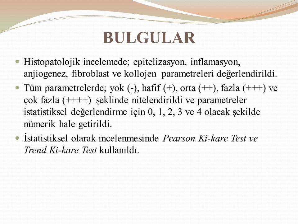 BULGULAR Histopatolojik incelemede; epitelizasyon, inflamasyon, anjiogenez, fibroblast ve kollojen parametreleri değerlendirildi. Tüm parametrelerde;
