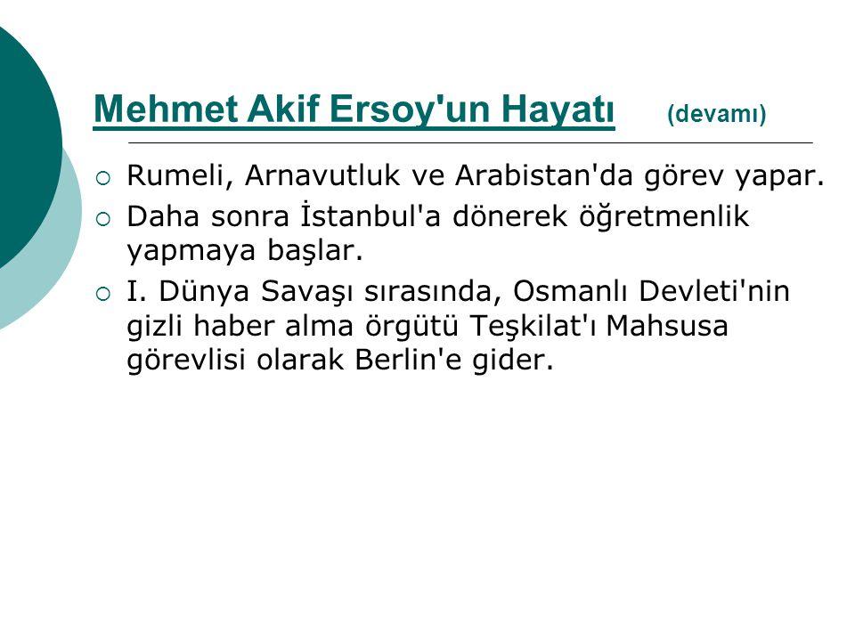  Rumeli, Arnavutluk ve Arabistan'da görev yapar.  Daha sonra İstanbul'a dönerek öğretmenlik yapmaya başlar.  I. Dünya Savaşı sırasında, Osmanlı Dev