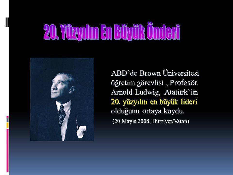 ABD'de Brown Üniversitesi öğretim görevlisi, Profesör.