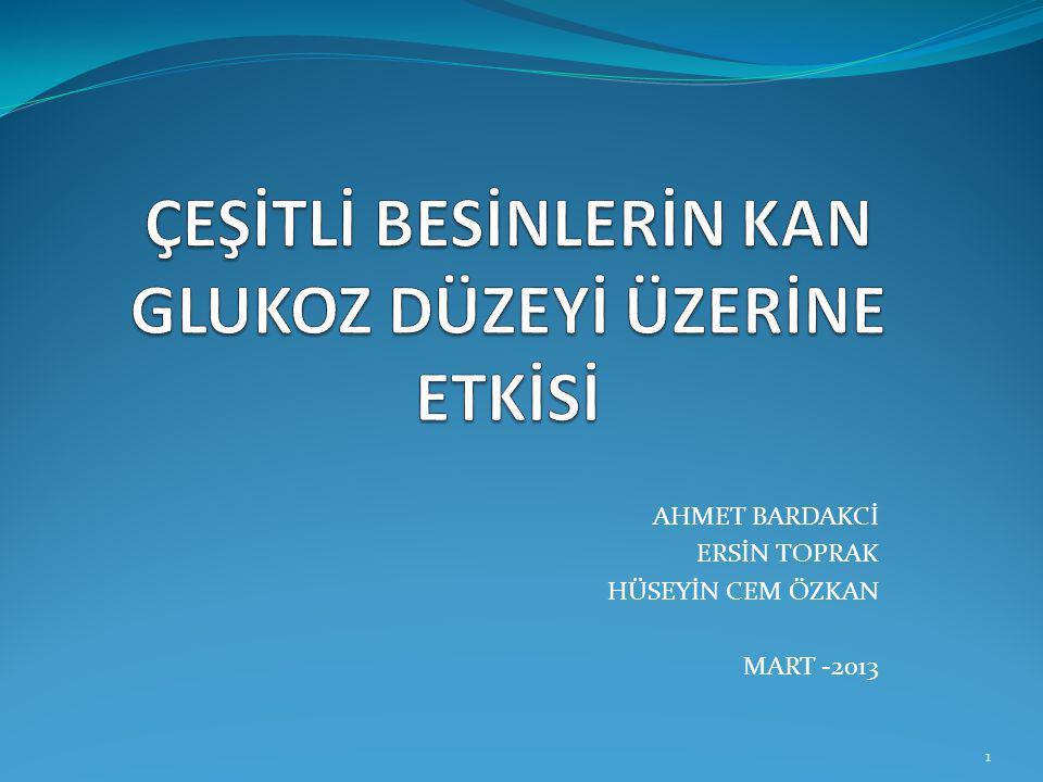 AHMET BARDAKCİ ERSİN TOPRAK HÜSEYİN CEM ÖZKAN MART -2013 1