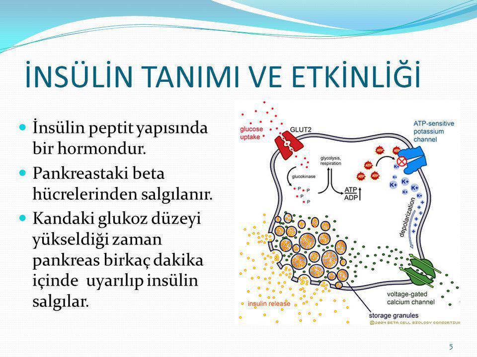 Açlıkta insülin düzeyi 5-10 μU/mL iken yemek sonrası 60-90 μU/mL'ye yükselir.