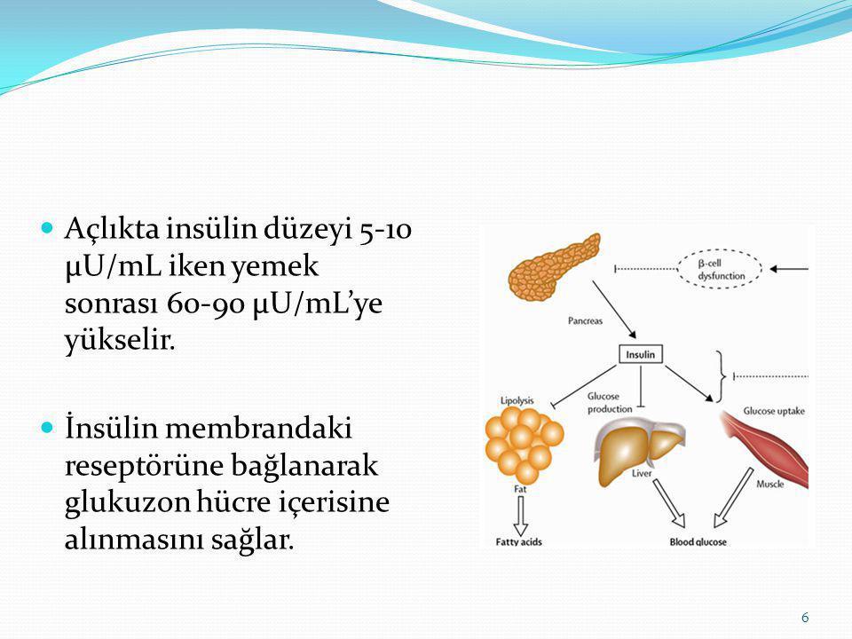 GLİSEMİK İNDEKS Karbonhidratlı bir besinin yendikten belirli bir süre sonunda kan şekerini yükseltebilirliğini ifade eder.