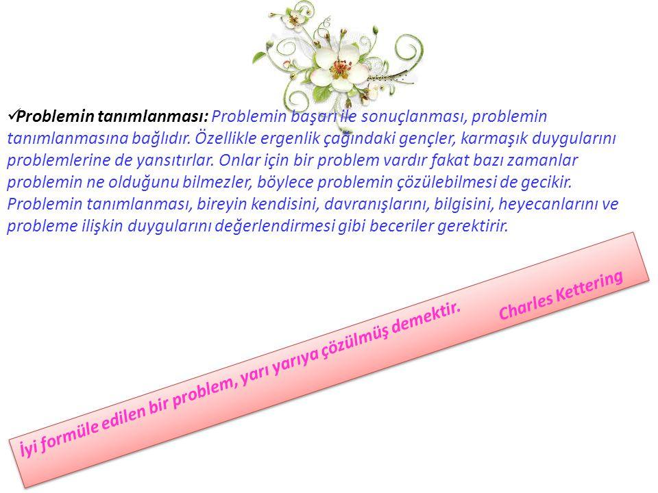 Problemin tanımlanması: Problemin başarı ile sonuçlanması, problemin tanımlanmasına bağlıdır. Özellikle ergenlik çağındaki gençler, karmaşık duyguları